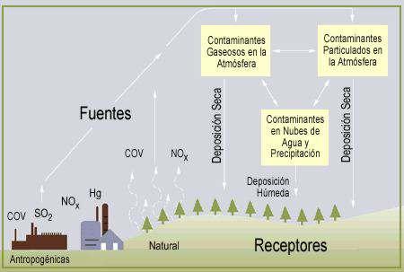 La lluvia Ácida Causas y Consecuencias