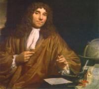 Anton Leeuwenhoek Primer Microscopista Inventor Microscopio