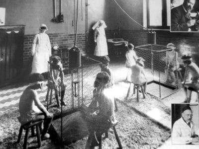 Los Microorganismos La Medicina en el Siglo XIX