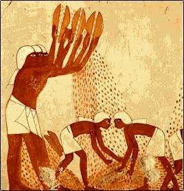 Resultado de imagen para agricultura primitiva