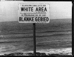 Separación Negros de y Blancos