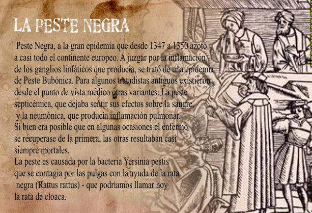 La peste negra en la Edad Media