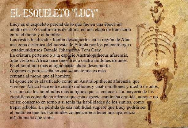 esqueleto de Lucy