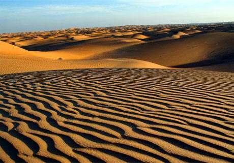 Desierto De Sahara Desiertos de Africa Flora y Fauna Mayor Desierto –  BIOGRAFÍAS e HISTORIA UNIVERSAL,ARGENTINA y de la CIENCIA