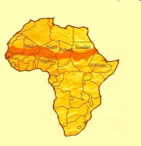Hambre en Sahel Africa Sequia, Langostas Arrasan Cosechas en Africa