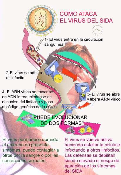 folleto sobre SIDA