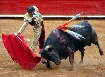 Torero, corrida de toros
