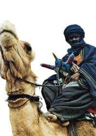 la vida en el desierto