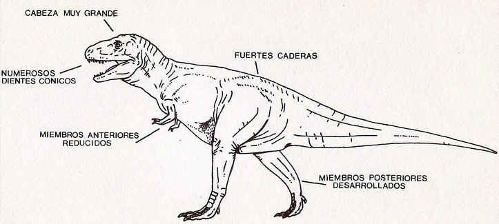 Resultado de imagen para historiaybiografias.com dinosaurios