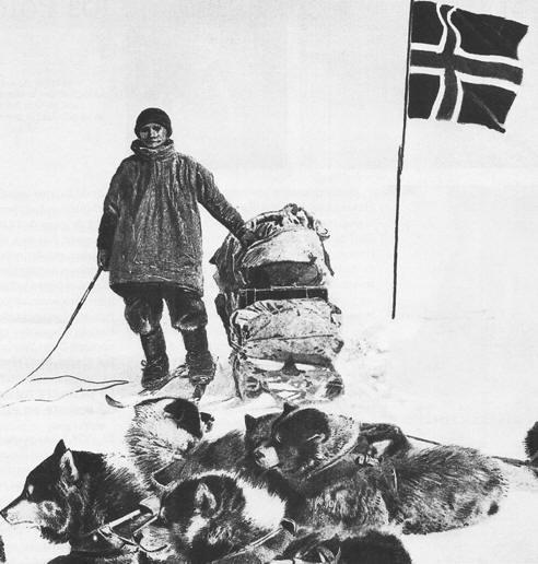 amundsen con sus perros