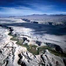 Desierto de Atacama: Ubicacion Flora y Fauna Riqueza Minerales - BIOGRAFÍAS  e HISTORIA UNIVERSAL,ARGENTINA y de la CIENCIA