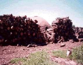 Horno y materia prima para la elaboración del carbón vegetal