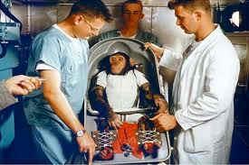 mono al espacio