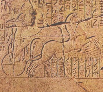 Biga Egipcia carretas