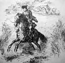 historia comunicacion caballos