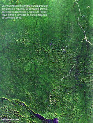 1976: RONDONIA BRASIL AMAZONAS DEFORESTACION