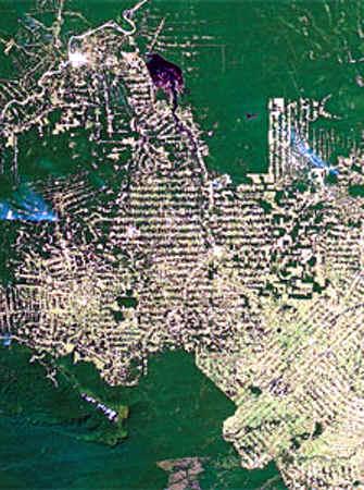 2009:RONDONIA BRASIL AMAZONAS DEFORESTACION