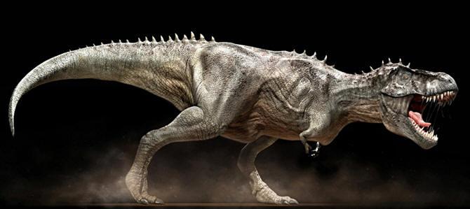 Dinosaurio, Tipos
