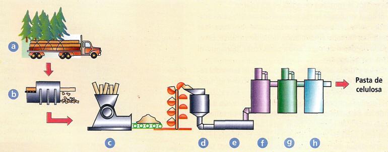 proceso pasta base