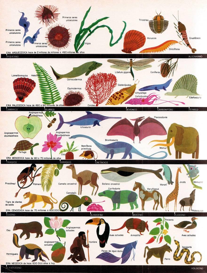 Las eras geologicas del planeta Tierra Primeros seres vivos organicos
