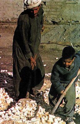 Pakistan, trabajo infantil