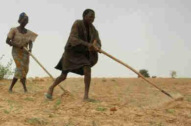 Hambre en Sahel Africa