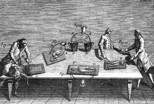 Revolucion cientifica Trabajo de Galvani