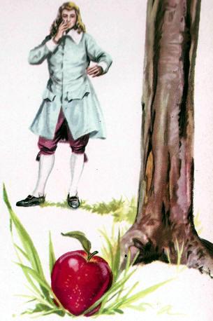 newton y la manzana
