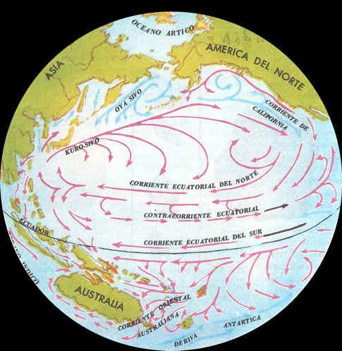 corientes marinas del mundo