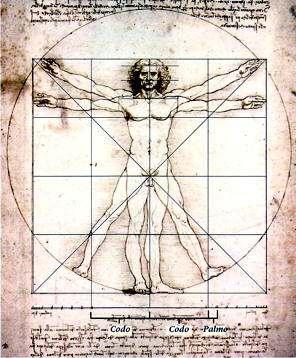 Euritmia: Proporciones del Cuerpo Humano