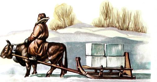 trineo esquimal