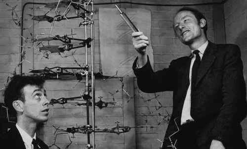 cientificos que estudiaron la estructura del ADN