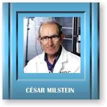 Cientifico Premio Nobel Milstein