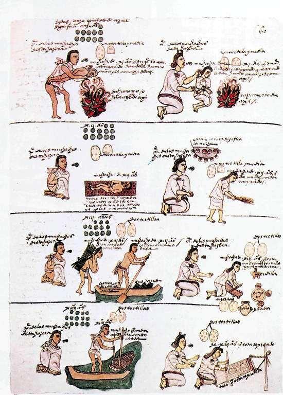 vida de los aztecas