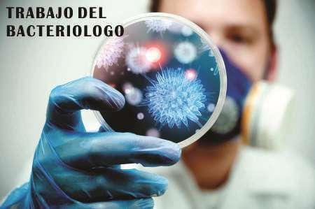 bacteriologo