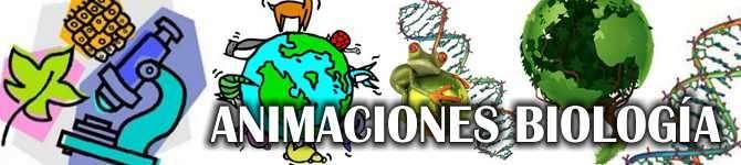 animaciones de biologia