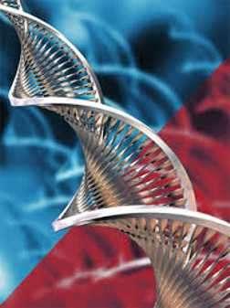 cadena de adn biotecnologia