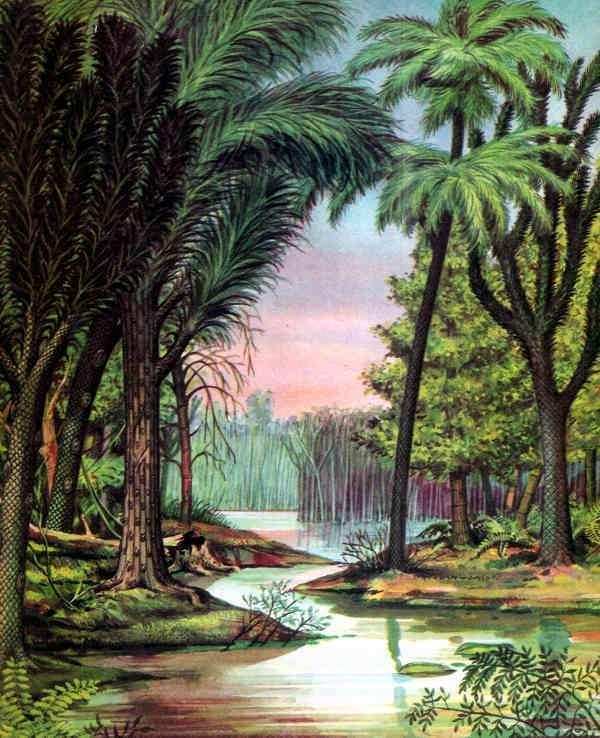 bosque periodo carbonifero