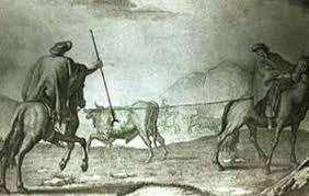 CACERIA DE vaca en la etapa colonia