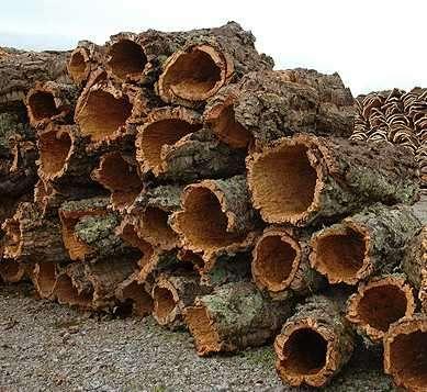 El corcho propiedades producci n y usos arbol alcornoque - Propiedades del corcho ...
