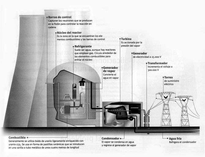 cuadro esquema de un central nuclear: las etapas