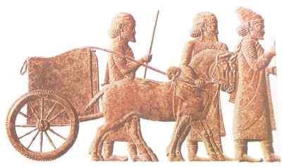 organizacion de los persas rey dario