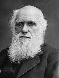 Darwin Naturalista Ingles