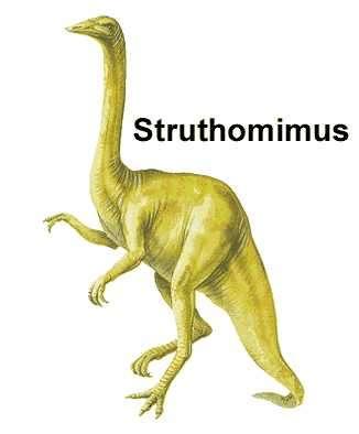 dinosaurio struthomimus