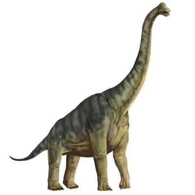 Animales de la Era Mesozoica Especies Que Habitaron La Tierra