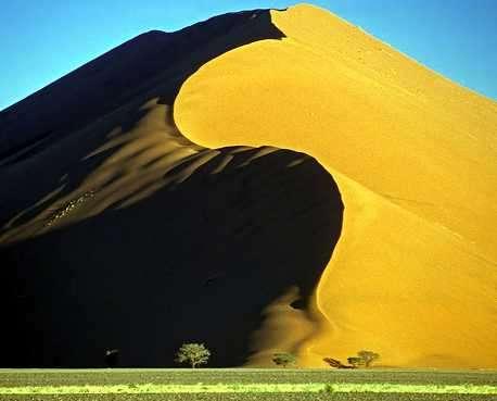 duna en el desierto