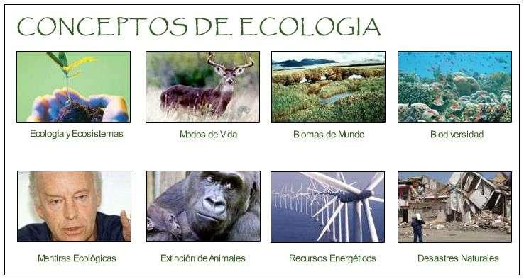 Concepto de Biosfera Definicion de Ecologia Medio Ambiente