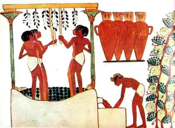 vendimia en el antiguo egipto