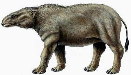elefante antiguo