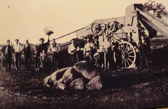 Exportaciones de Granos en 1880 Caracteristicas Plan Agroexportador